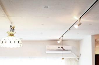 天井:スケルトンに水性塗装